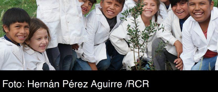 UNA INVITACIÓN A PLANTAR ÁRBOLES